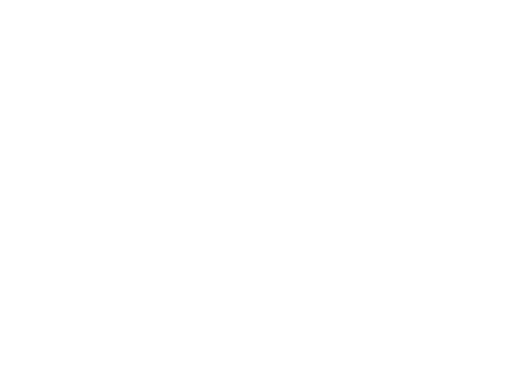 Hello New Zealand | Intercâmbio